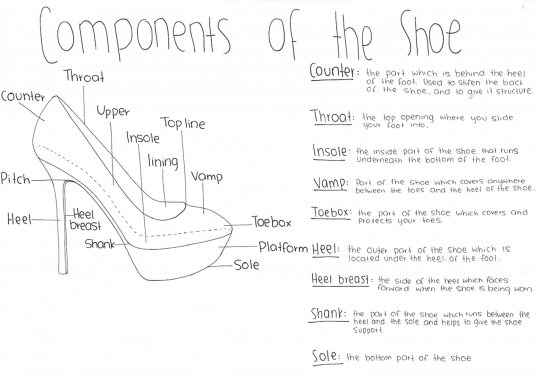 Components of the shoe diagram
