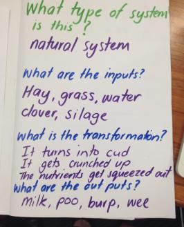 Big book page, Natural system