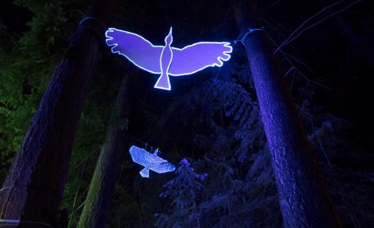 life sized bird silhouettes glowing under black light