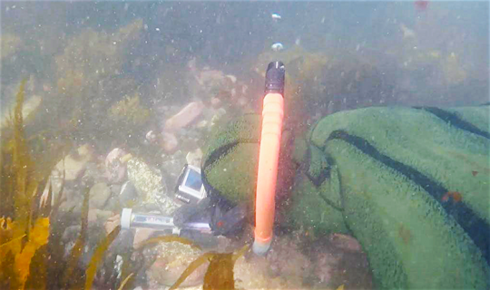 Paua tool in situ with diver