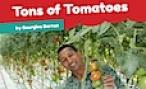 The grower and his tomatoes
